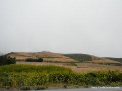 coastal farmland