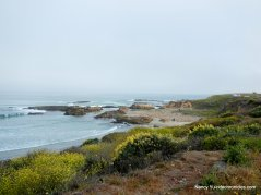pescadero beach landscape