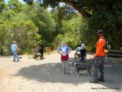 wildcat creek trail-water stop