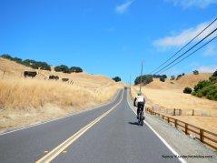pig farm hill climb