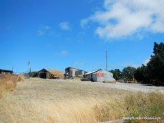 pig farm hill summit