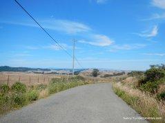 bay hill rd