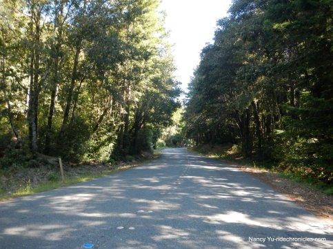 steep climb-timber cove rd