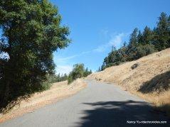 steep climb-hauser bridge