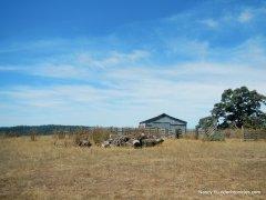 hauser bridge ranch