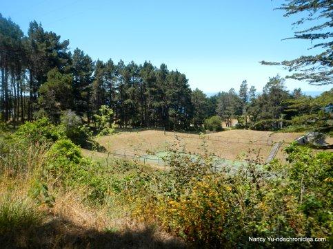 Hwy 1 S-sea ranch