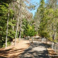 bower community park