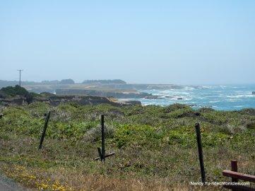 pt arena coast