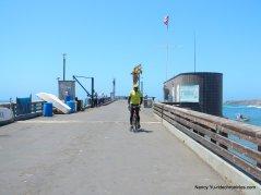 pt arena wharf/pier