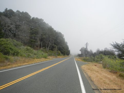 Hwy 1 S to gualala