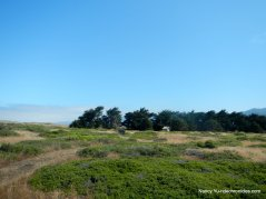 manchester beach State park