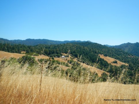 mountain view rd