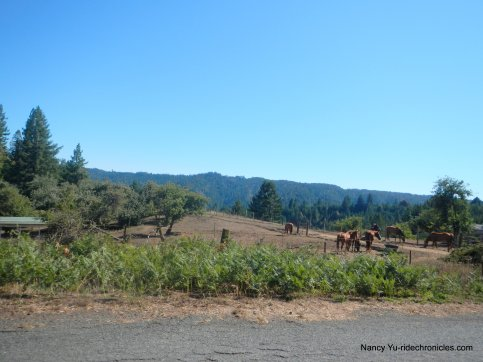 philo greenwood rd ranch