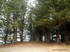greenwood state beach
