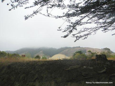 view of elk