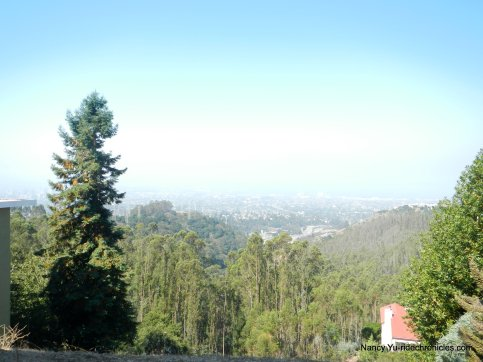 skyline blvd views