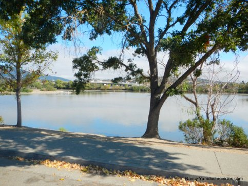 scottsdale pond