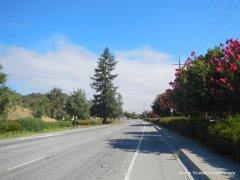 redwood blvd