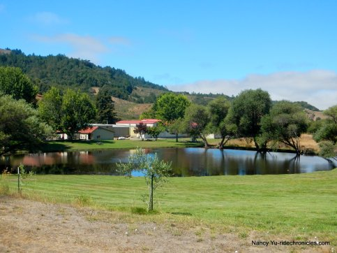 pt reyes petaluma rd-cheese factory pond