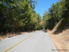 canyon oak dr