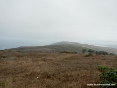 tomales point