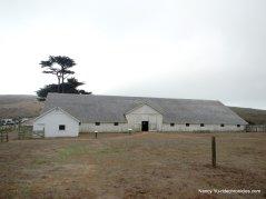 pierce point ranch