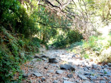 sausal creek