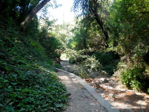 dimond canyon trail
