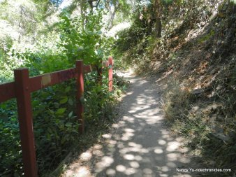 to dimond canyon trail