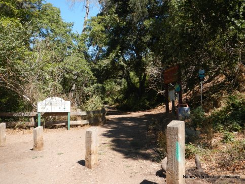 dimond canyon trailhead