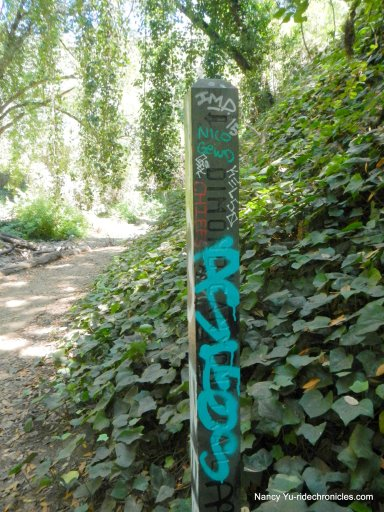 dimond canyon trail junction