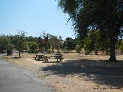 ed levin park