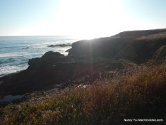 mendocino point-headlands