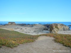 glass beach cove#1