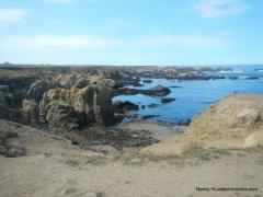 noyo headlands coast
