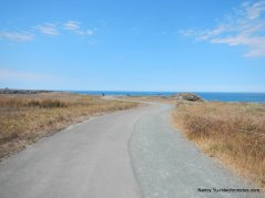 noyo headlands coastal trail