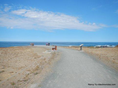 noyo headlands coastal trail