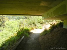 ecological staircase trail ecological staircase trail