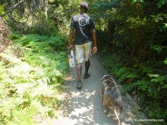 ecological staircase trail