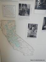 museum displays
