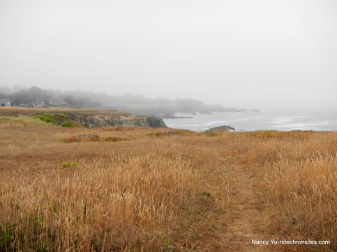 coastal bluff-south trail