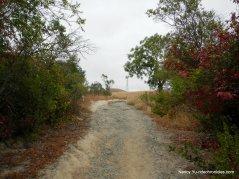 ranch laguna trail