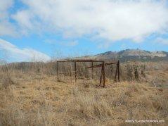 rocky ridge trail-pig trap