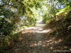 buckhorn creek area