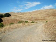 rocky ridge trail