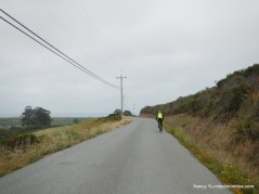 purisima creek rd