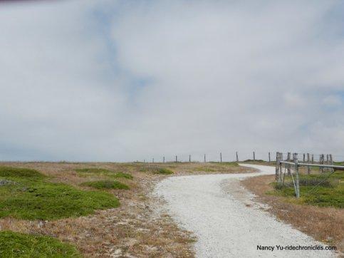 cowell purisima trail