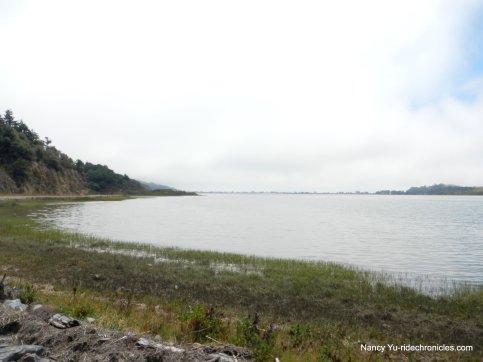bolinas lagoon