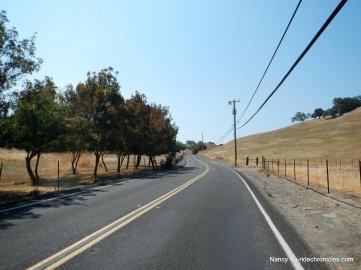 pig farm hill