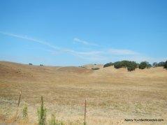castro ranch rd
